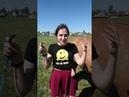 Отзыв Наташи о занятии со свободной лошадью. Анастасиея Конетренер. Школа Свободных Лошадей.