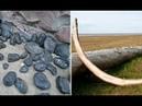 7 доисторических окаменелостей которые были обнаружены ещё древними людьми