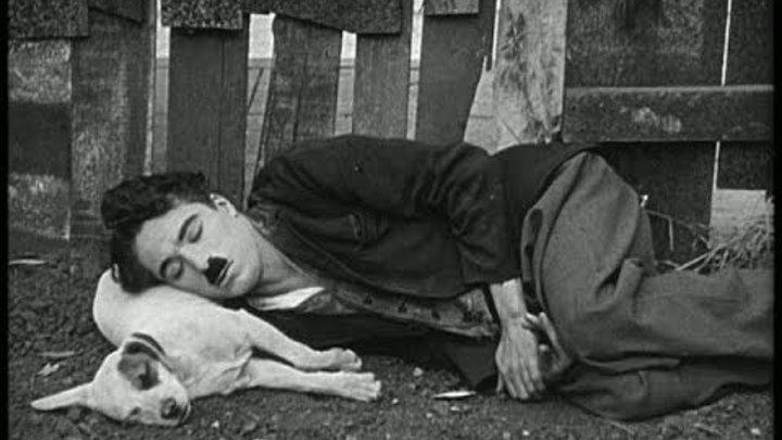 Собачья жизнь х ф 1918 г Чарли Чаплин