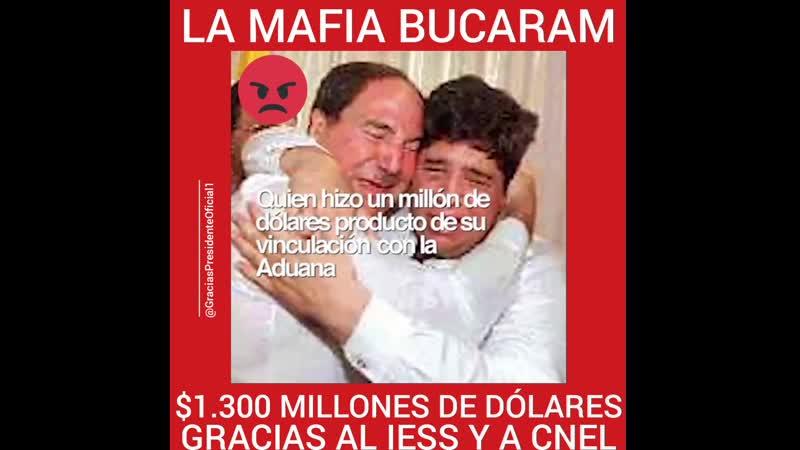 Se nos están llevando la patria entera estos sinvergüenzas 😢. Gracias al IESS y a CNEL la mafia Bucaram gozan de más de $ 1.3