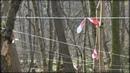 __о трассе Пруссия-Форест, 1-й этап 2019г. (12-14.04.2019)