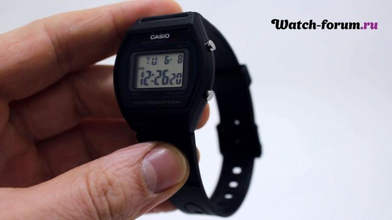 Casio Illuminator W-202-1A - обзор | Форум о часах Watch-Forum.ru