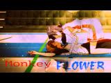 Parov Stelar - The Mojo Radio Gang (AMV Monkey Flower)