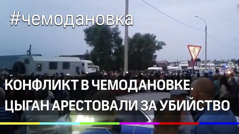 В Чемодановке начались задержания цыган виновников конфликта