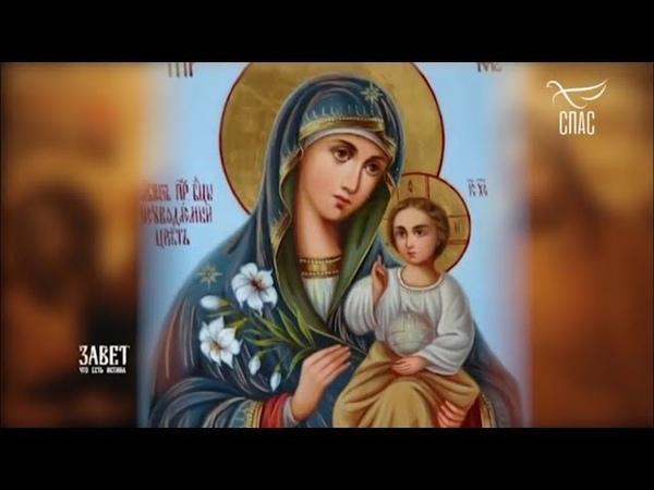 «Завет» 🌹 Икона Божией Матери «Неувядаемый Цвет»