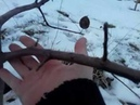 Обрезка 5-ти летней яблони