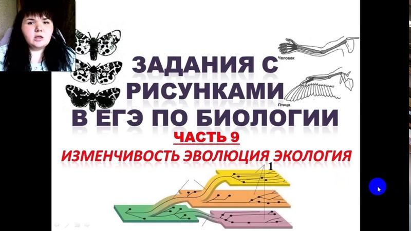 Задания с рисунками из ЕГЭ по биологии (ЭВОЛЮЦИЯ, ИЗМЕНЧИВОСТЬ, ЭКОЛОГИЯ)