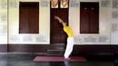 30 minutes practice of Sivananda Yoga for beginners to intermediates
