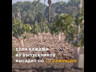 Выпускников обязали сажать деревья dsgecrybrjd j,zpfkb cf;fnm lthtdmz