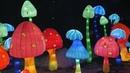 Фестиваль гигантских китайских фонарей в Санкт Петербурге