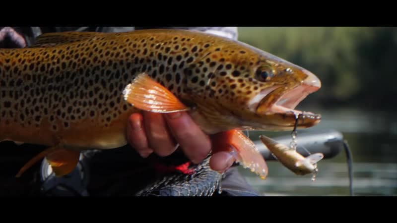 Trout Lures For Norway - Rapala® (English Captions)