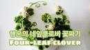 앙금플라워 네잎클로버 토끼풀꽃 Four-leaf clover flower piping