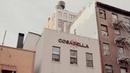 60% Revenue Growth: Cosabella's Success Story