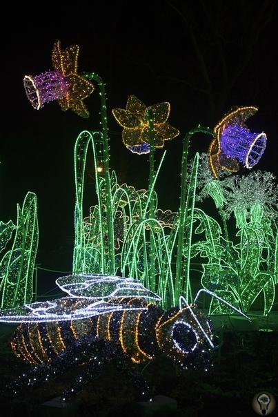 В ВИЛЯНУВЕ ОТКРЫЛСЯ КОРОЛЕВСКИЙ САД СВЕТА В парке Дворца короля Яна III Собеского в Вилянуве в Варшаве открылся Королевский сад света. Это музыкальная осенне-зимняя выставка «Музыкальный сад