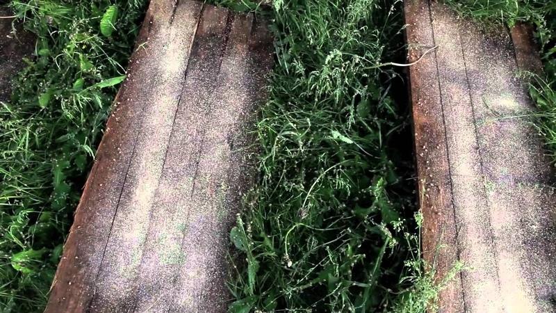 Hodowla ślimaków - Slow Farm - Praca przy ślimakach w tunelu