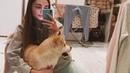 У порноактрисы Lena Reif РЖД потеряли собаку