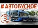 Автобусное Электробусы Что ты такое Камаз ЛиАЗ Volgabus Megapolis Мск Спб