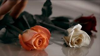 Alexandra Stan feat. Havana - Ecoute ✦ Dj Arsen Remix 2019 (MUSIC VIDEO)