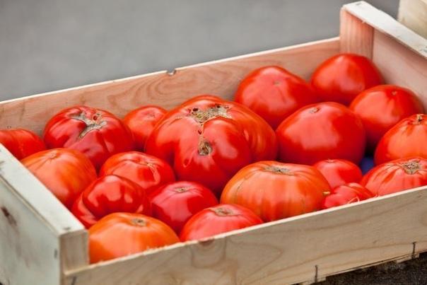 Деформация плодов томатов Сажая на грядку растения томата, мы ожидаем урожай ровных, гладких, красивых плодов. Однако это не всегда получается. Разнообразные деформации плодов томата относят к