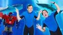 Видео для детей в Аквапарке - Новое задание Оптимуса Прайма! – Игры с супергероями Акватим