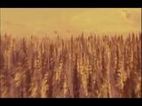 KD Lang - Barefoot (Salmonberries Movie)