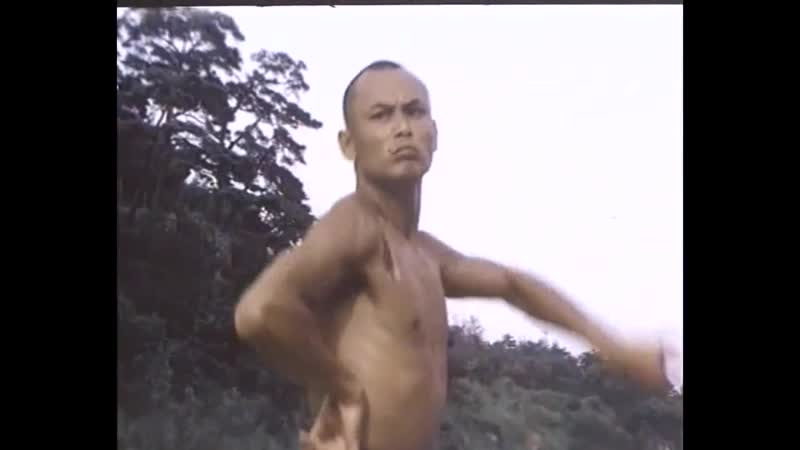 Chia - Hui Liu - Shao Lin zui ba quan ( 1981 )