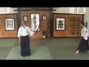 Saotome Sensei - Cutting with Ki