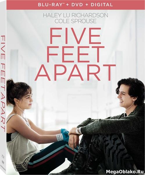 В метре друг от друга / Five Feet Apart (2019/BDRip/HDRip)