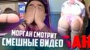 приколы про животных самые смешные до слёз видео с озвучкой на русском