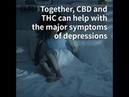 Cannabis strains that may help with depression