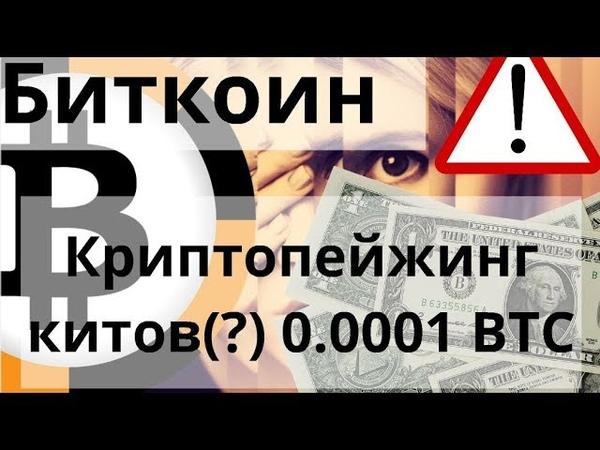 Биткоин Криптопейжинг китов (?) 0.0001 BTC. Чистые биткоины дороже на 20%