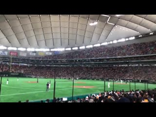 Wow winners air being played at a japanese baseball game for a professional baseball players appearance song - -