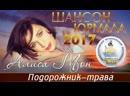 Cool Music • Алиса Мон - Подорожник-трава (Шансон - Юрмала 2017)