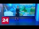 Погода 24 : в Европейской России задержатся дожди, станет прохладнее - Россия 24