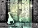 Vera Lynn - I Will Wait For You -