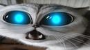 TOP-10 Смешных видео поющие коты и не только Funny Animals