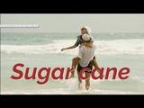 Sugar cane - Tom Baxter - LinijaStila 2018