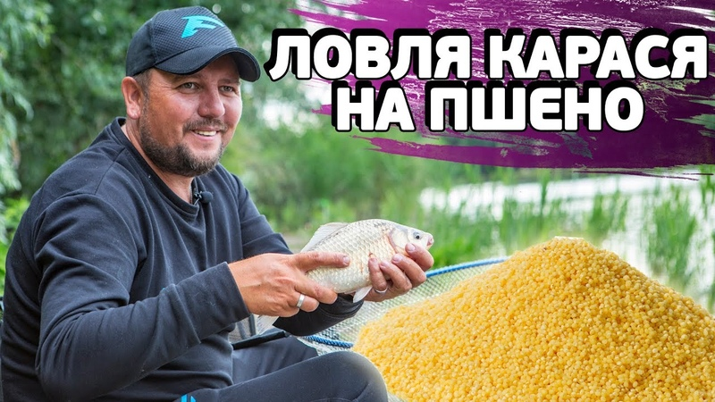 Карась на ФИДЕР Ловля карася и подлещика на ПШЕНО Рыбалка с ночевкой