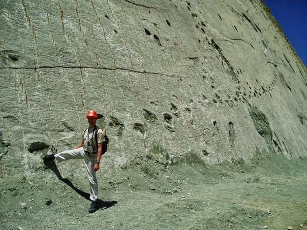 Скала динозавров или Кэл Орко место с самым крупным в мире скоплением следов динозавров На окраине города Сукре, Боливия, находится крупный цементный завод. Когда в 1985 году карьер по добыче