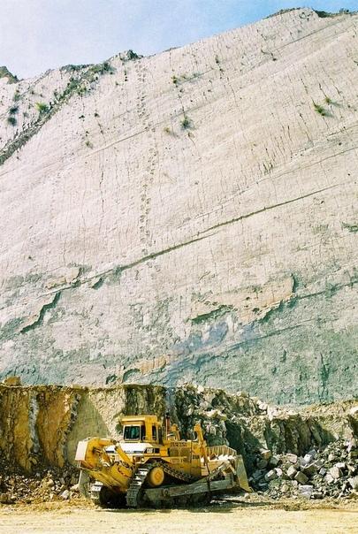 Скала динозавров или Кэл Орко  место с самым крупным в мире скоплением следов динозавров
