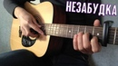 Тима Белорусских - Незабудка Fingerstyle Guitar Cover ТАБЫ