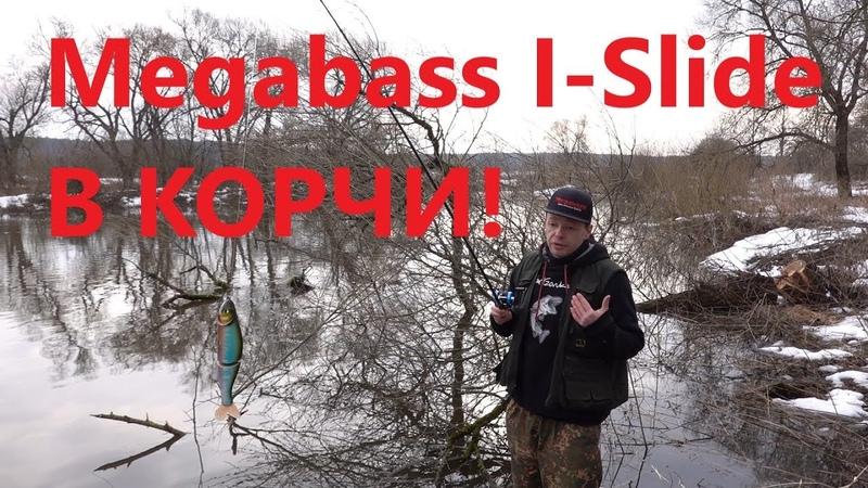 Как я купал Megabass I-Slide 185 с берега в затопленных Кустах!