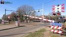 Spoorwegovergang Helmond(NB) 😍4K😍 Dutch Railroad crossing