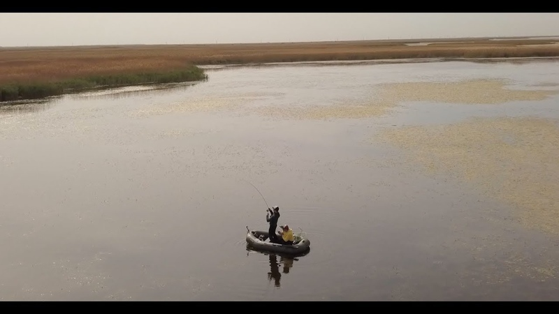 Рыбалка в плавнях Ловля щуки на лиманах