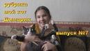 СМЕШНОЕ ВИДЕО ПРО КОТА РУБРИКА мой кот Дымарик ВЫПУСК №7 🐱🐈
