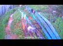орловский карьер ручей вонючка
