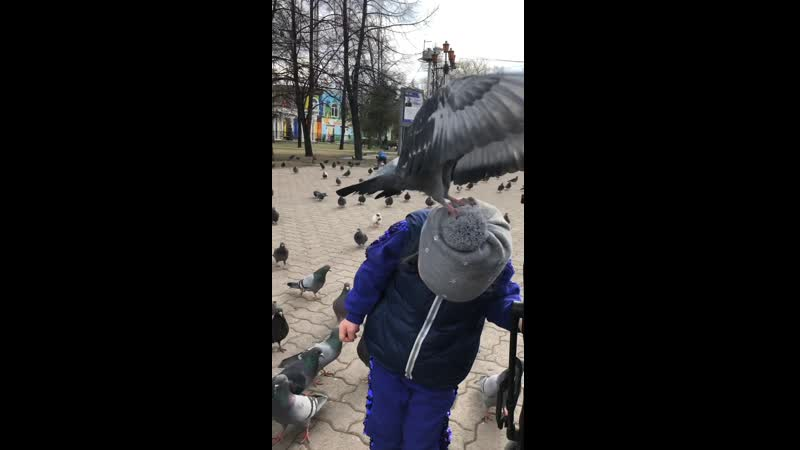 23 04 2019 Гули на шапке у Анютки в парке им Пушкина Челябинск