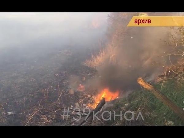 В Анапе объявлен режим высокой пожароопасности