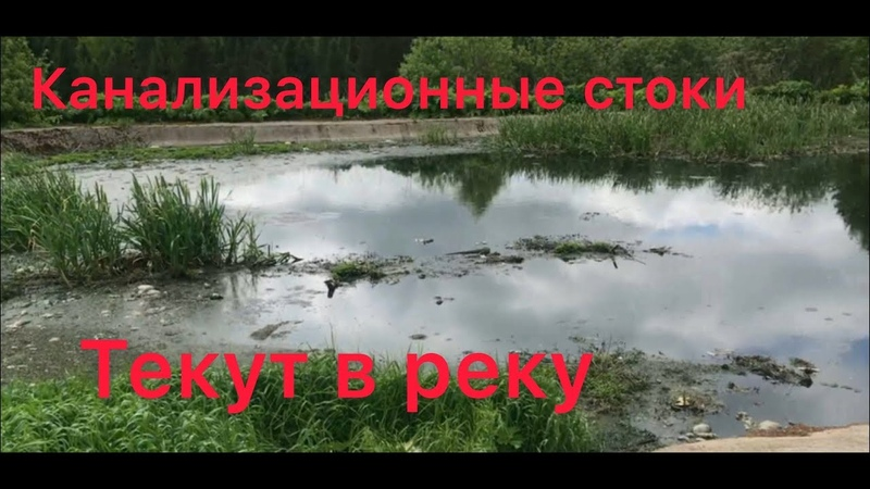 Нечистоты попадают в реку Октябрьский Пермский край