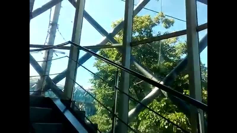 Химки 200 пешеходный наземный мост стеклянный железный переход над перекрестком улиц летом днем
